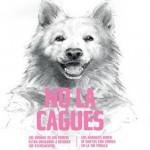 Campaña de concienciacion a dueños de perros