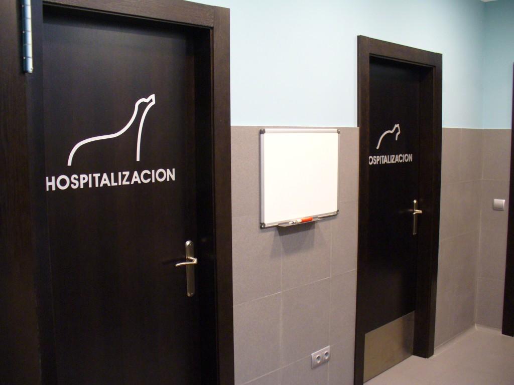consulta veterinaria en oviedo hospitalizacion