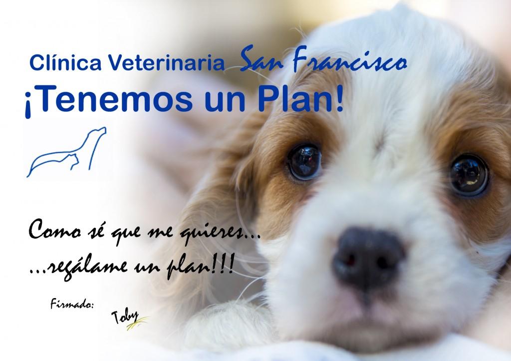 Planes de salud cachorros